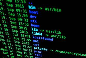 Future Software Programming Languages